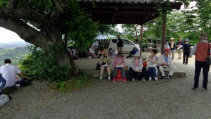 八女中央大茶園展望所