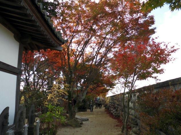 如意輪寺かえる寺を歩く