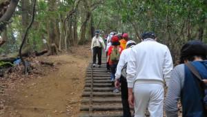 天拝山の階段